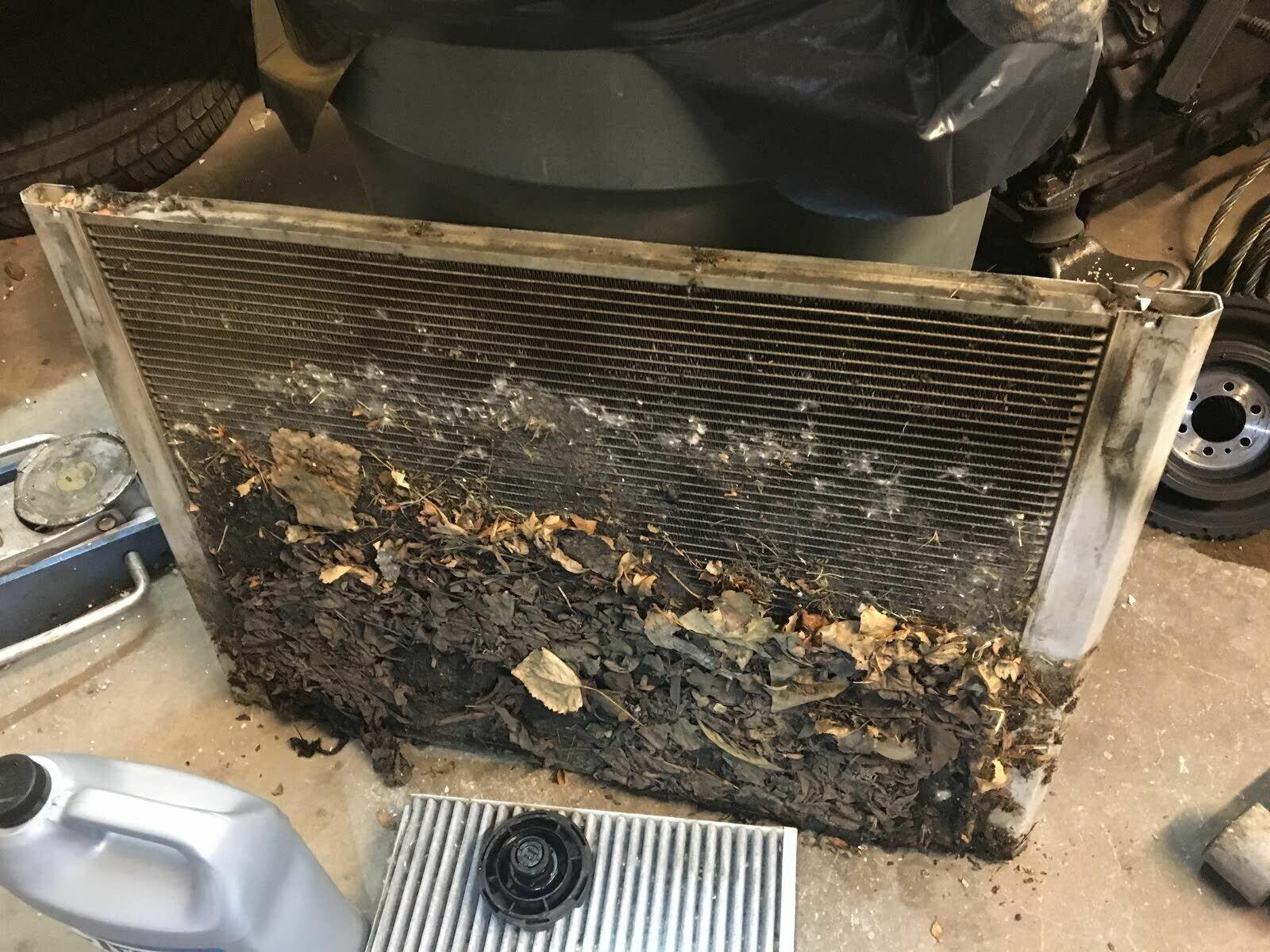 Причиной перегрева может быть и забитый радиатор