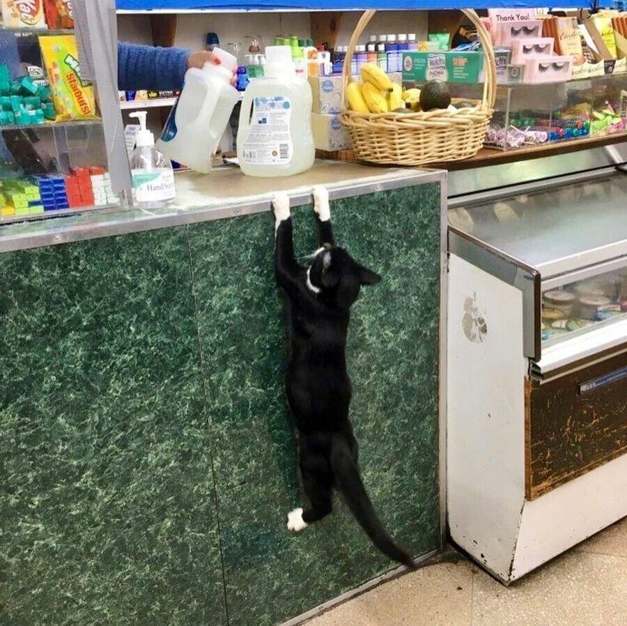 Продавец забыл дать сдачу.