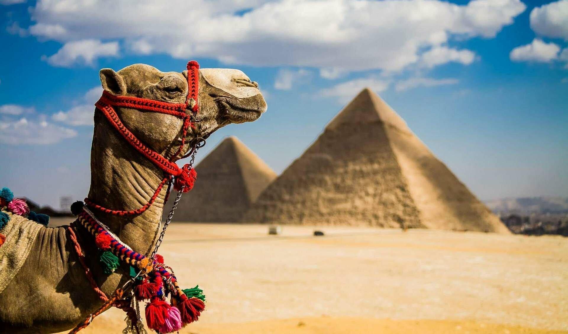 Самостоятельный отдых в Египте выйдет намного дороже, чем пакетный тур