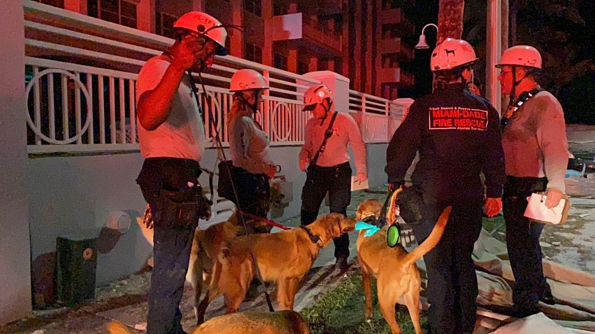 К спасательной операции привлекали собак