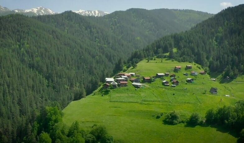 Природа в Грузии.