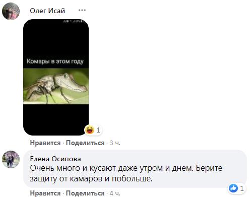 Комаров в шутку сравнили с крокодилами