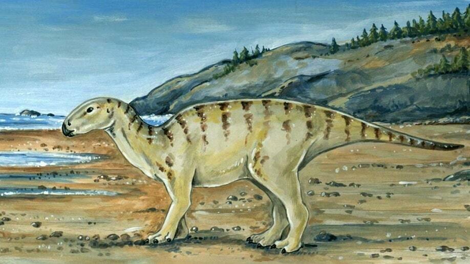 Зображення ймовірного зовнішнього вигляду динозавра