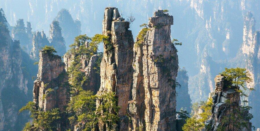 Гора Тяньцзы в национальном лесном парке Чжанцзяцзе
