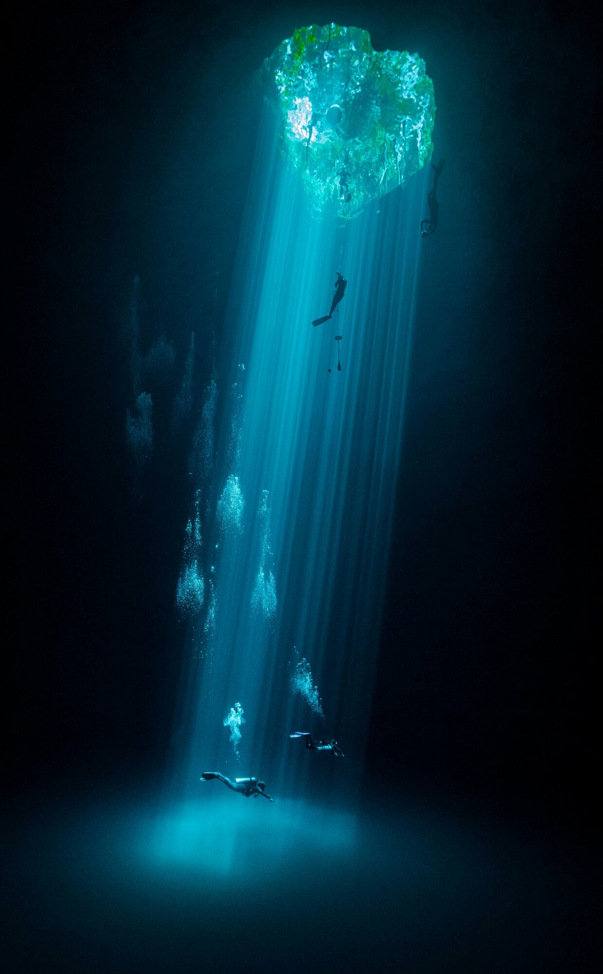 Water second place: Joram Mennes, MexicoThree levels of leisure: swimmers, freedivers and divers enjoy their respective sport and recreational activities in a fresh water mass known locally as the CenotesPhotograph: Joram Mennes/TNC photo contest 2021