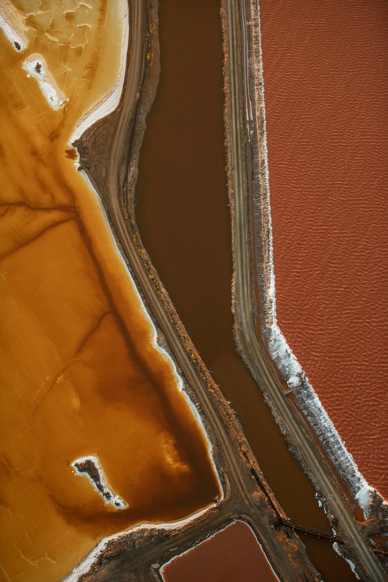 Landscape third place: Jassen Todorov, US'If you have flown into San Francisco international airport, you may have seen these colourful salt ponds over the bay,' Todorov said. 'I have photographed them numerous times, as the colours and patterns constantly change thanks to microorganisms and salinity. This aerial image was taken while flying my plane.'Photograph: Jassen Todorov/TNC photo contest 2021