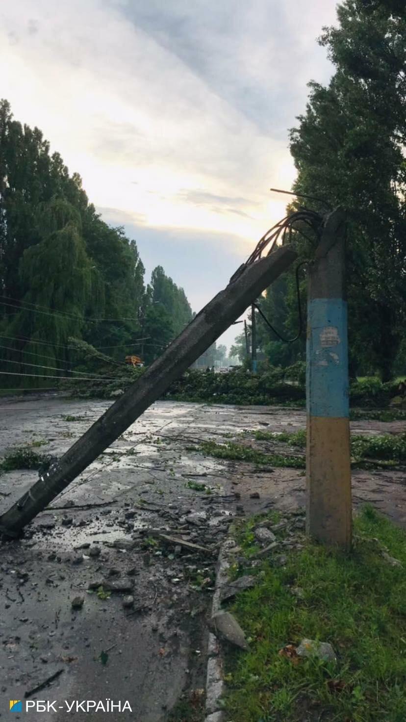 Поваленные деревья, затопленные улицы и пострадавший мужчина: Житомир накрыла непогода
