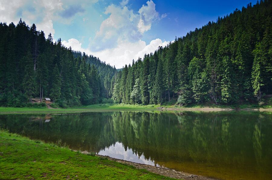 Вершины, озера и леса: самые яркие места Карпат для отдыха в разгар лета