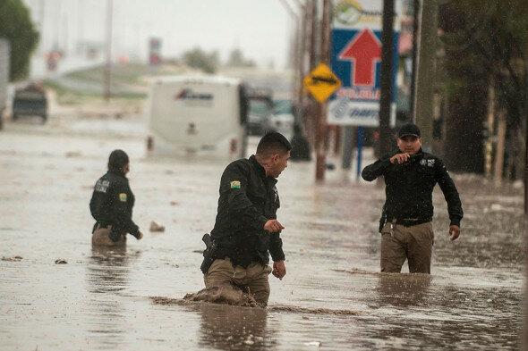 Фото: Miguel Sierra / EPA / ТАСС