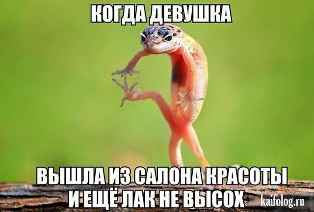 1470283727_001_4.jpg