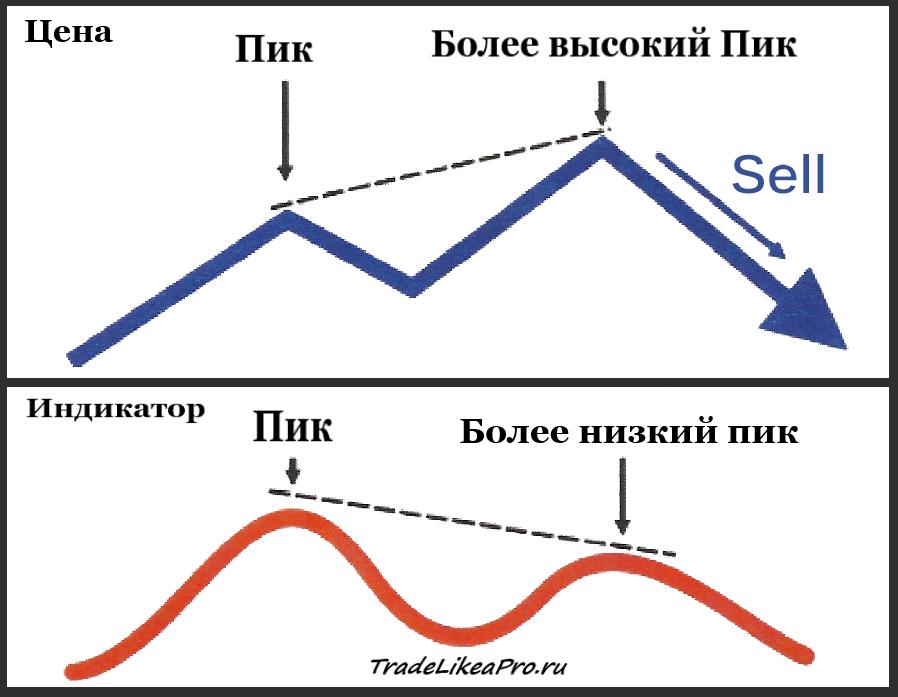 Klassicheskaya-medvezhya-divergentsiya.p