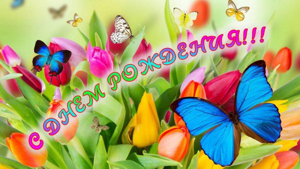 post-16441-0-24984800-1457770446_thumb.j