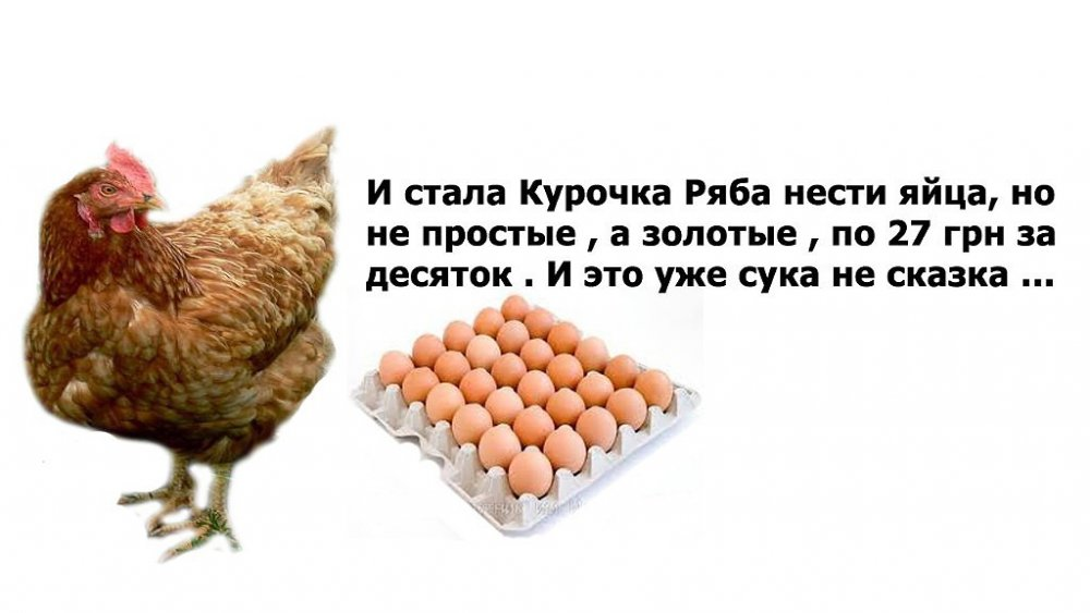 post-23953-0-75426100-1448345991_thumb.j