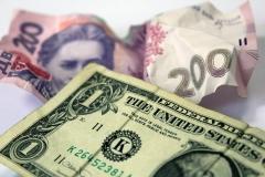 Курс доллара вырос до 17.70