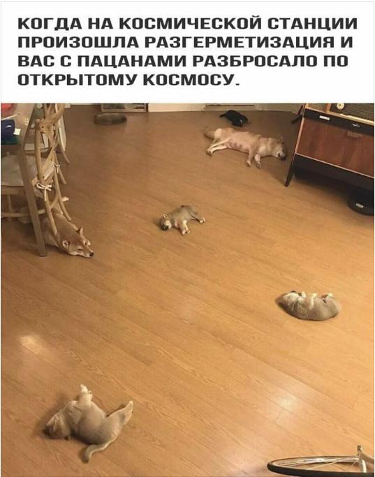 2018-01-05_110542.jpg