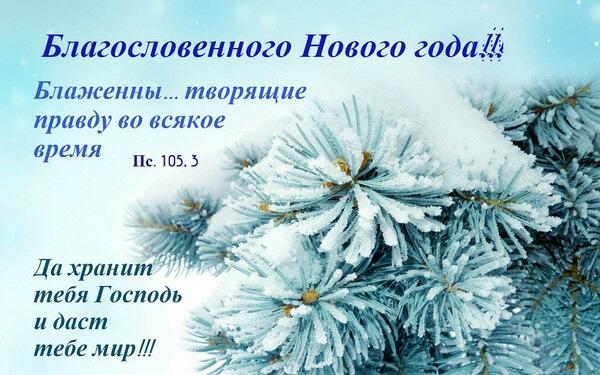 image-0-02-05-f6847e92eba39f4d24dffd8d41597406cce4574fd8219ee8b354ca9ab188dcc0-V.jpg