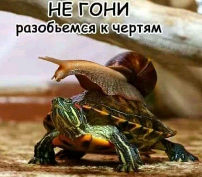IMG_20180822_181111.JPG