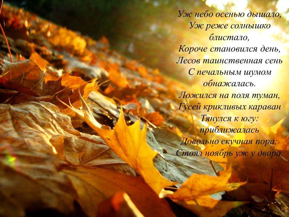 Уж+небо+осенью+дышало,+Уж+реже+солнышко+блистало,+Короче+становился+день,+Лесов+таинственная+сень+С+печальным+шумом+обнажалась..jpg