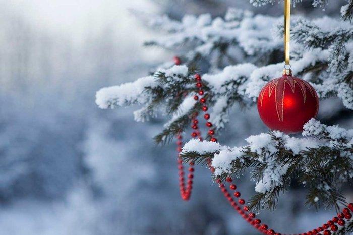Изменения декабря: добавят денег и выходных