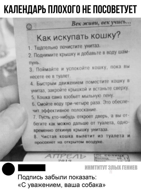 QBtqAfQtVZA.jpg