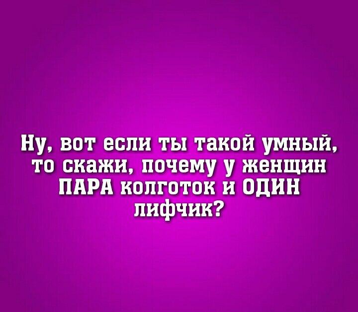 UID8242_1548910145_18.jpg