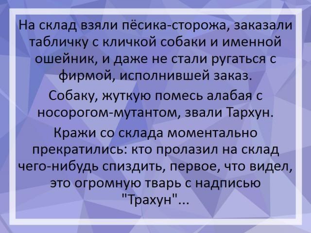 imageлг88.png