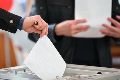 Выборы: влияние соцопросов на избирателей