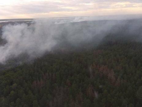 В Чернобыльской зоне произошел масштабный пожар
