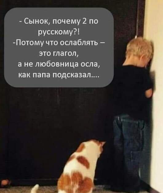 FB_IMG_1558777425665.jpg