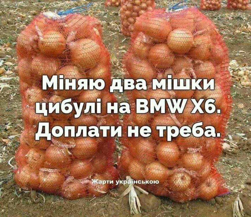 IMG-b55faa4dad3cc11d553d9877498d8265-V.jpg