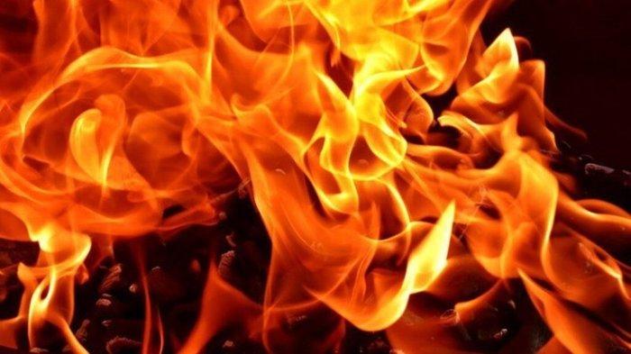 Огонь атакует Украину: в стране выросло число поджогов