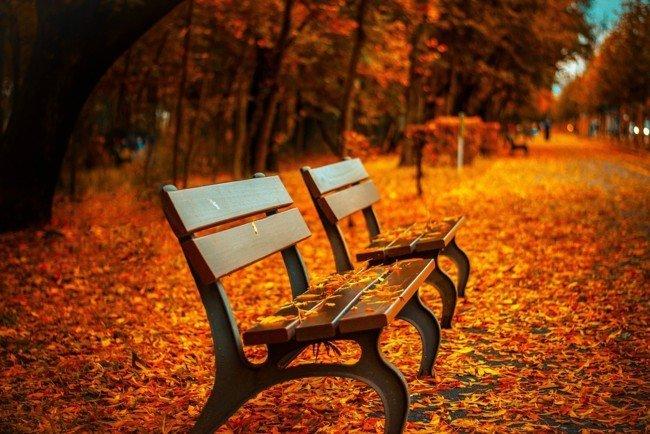 Выходные в октябре: сколько будем отдыхать