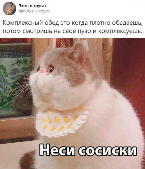 1571869000_prikol-21.jpg
