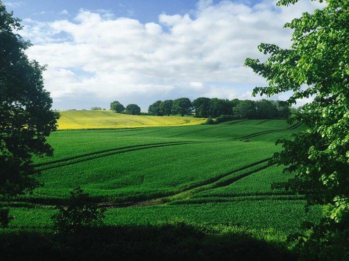 Продажа земли: плюсы и минусы поэтапной модели