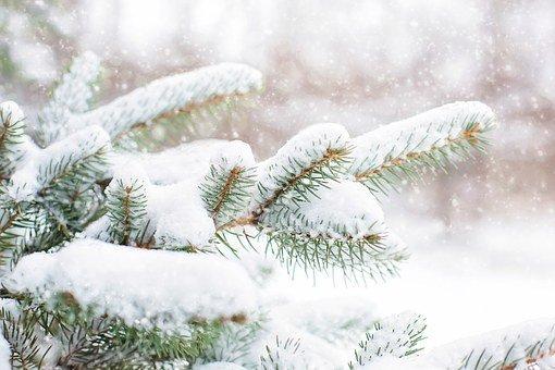 Какой будет зима-2020 в Украине