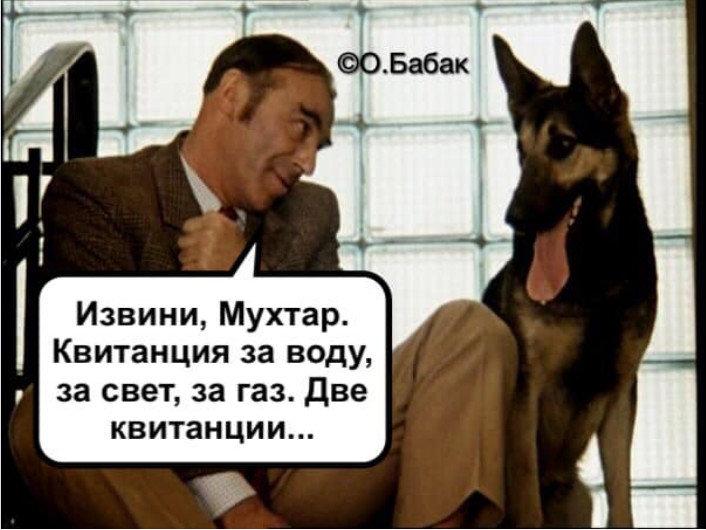 Нацгвардия закупила новый транспорт для служебных собак - Цензор.НЕТ 8628