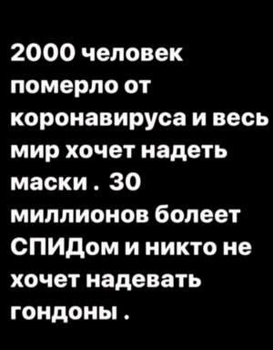 14068257.jpg