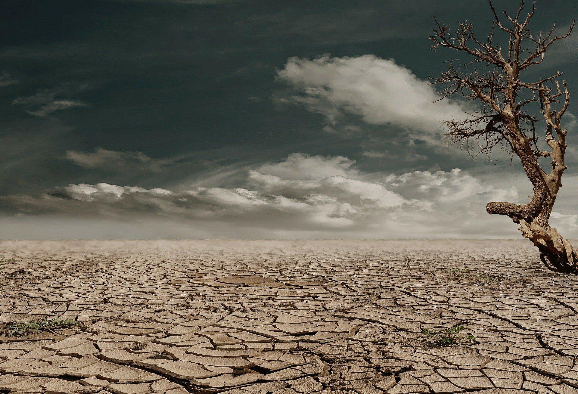 Ученые предупреждают о мега-засухе