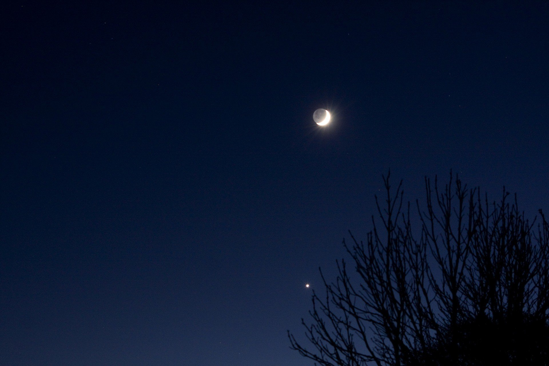 В конце апреля самая яркая Венера