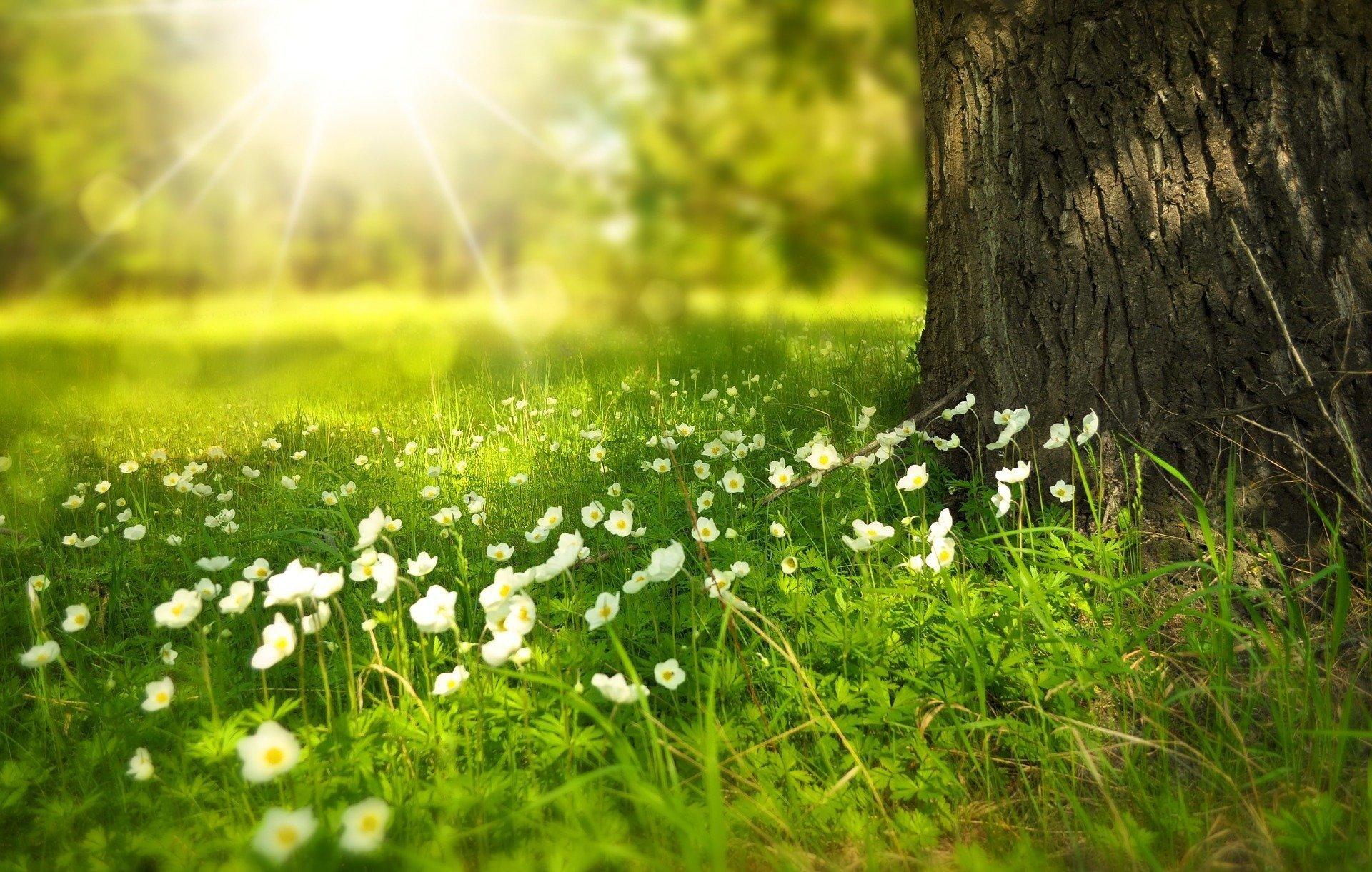 Праздничные дни в июне: сколько будем отдыхать