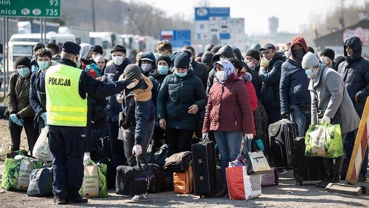 Заробитчане не хотят возвращаться из Польши
