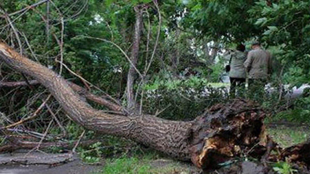 "В Украине бушует циклон ""Зора"" (фото, видео)"