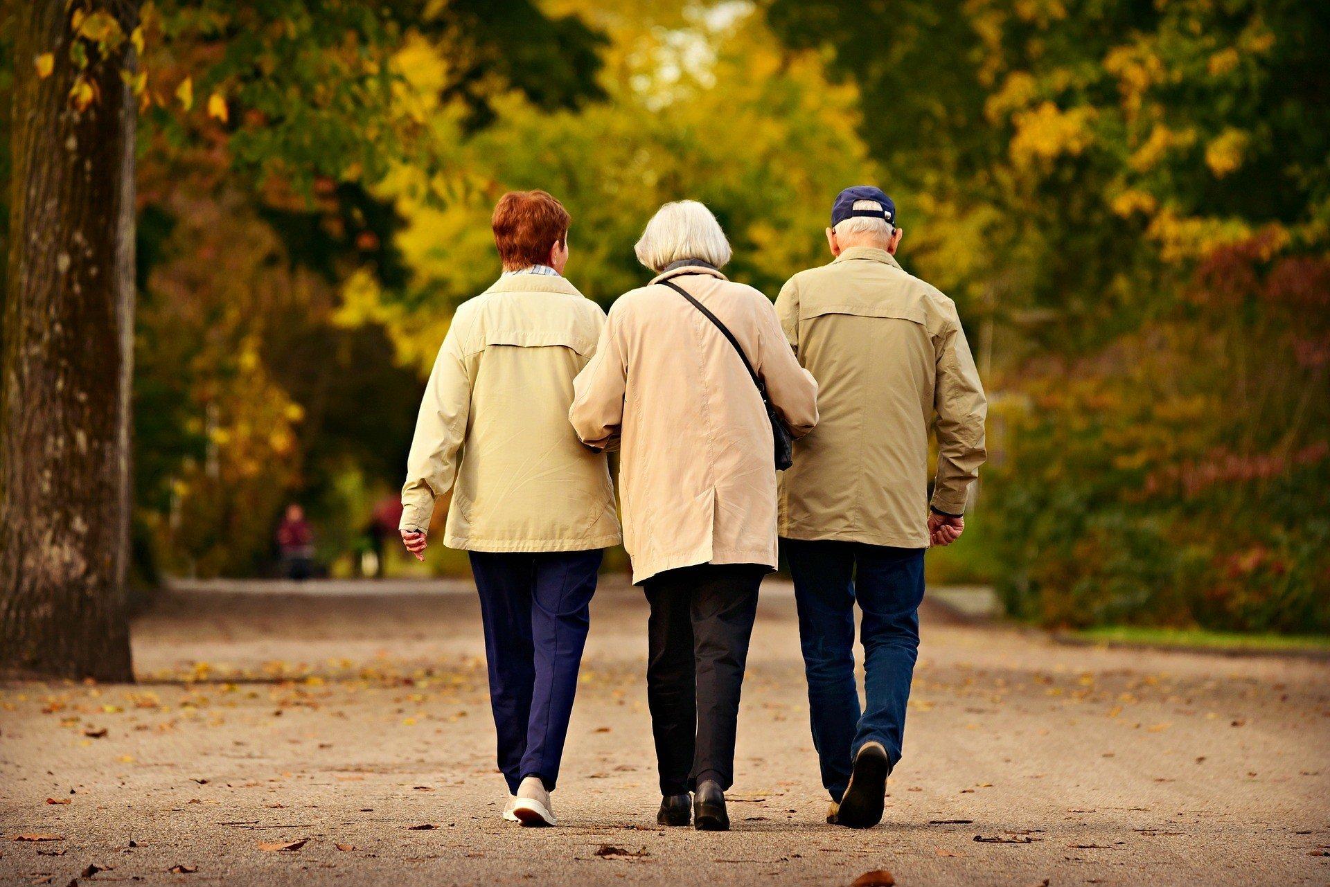 Зачем Шмыгаль пугает украинцев крахом пенсионной системы