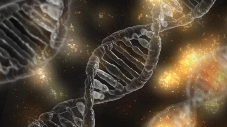 Эволюция человека - как изменятся наши лица в будущем