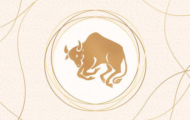 Подарки по знакам зодиака: что подарить Тельцу
