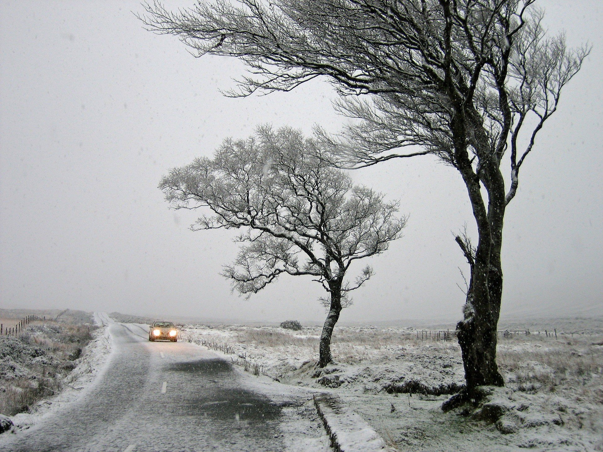 Синоптик предупредила об усилении морозов и штормовом ветре