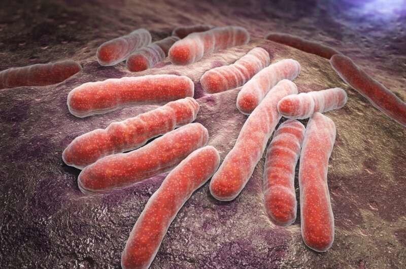 Ученые нашли эффективный метод лечения туберкулеза