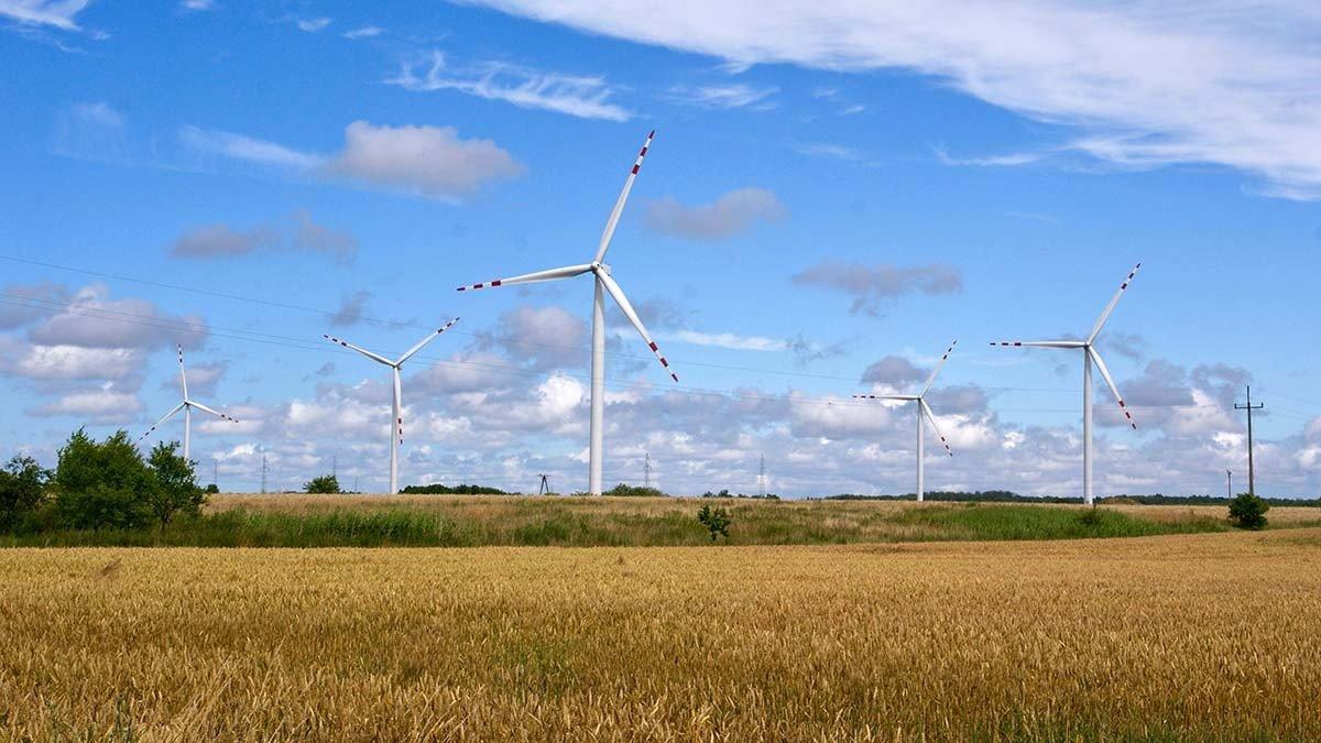 Китайская компания построит ветропарк в Украине