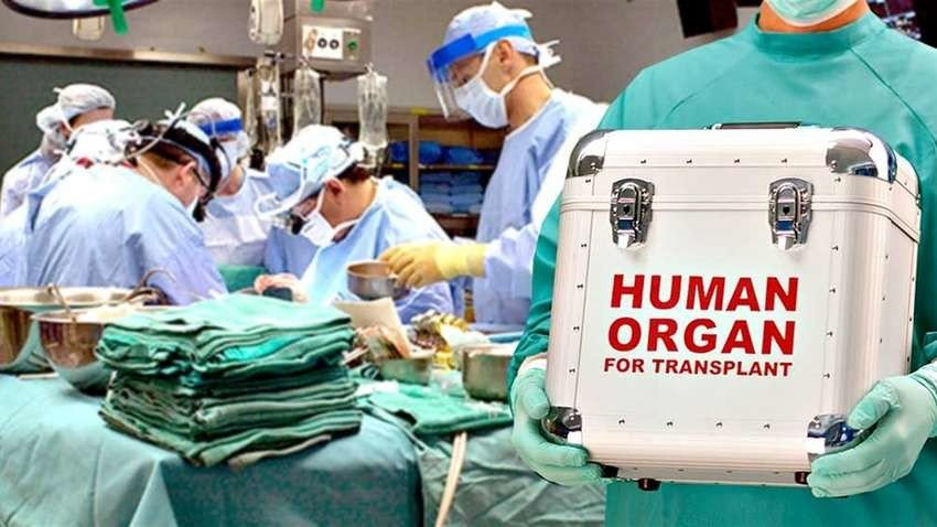 Китайских врачей поймали на краже органов