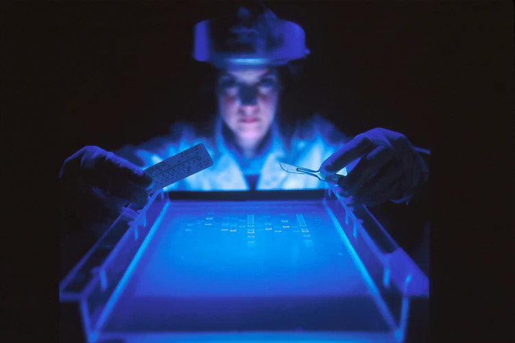 Ультрафиолетовые светодиодные лампы убивают коронавирус